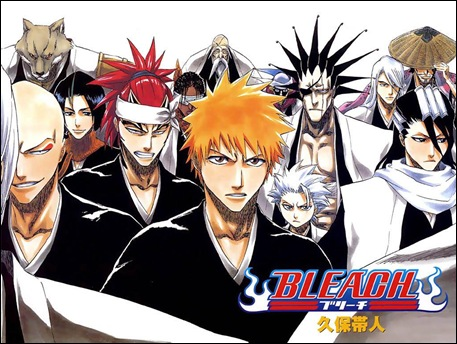 Bleach WP 12